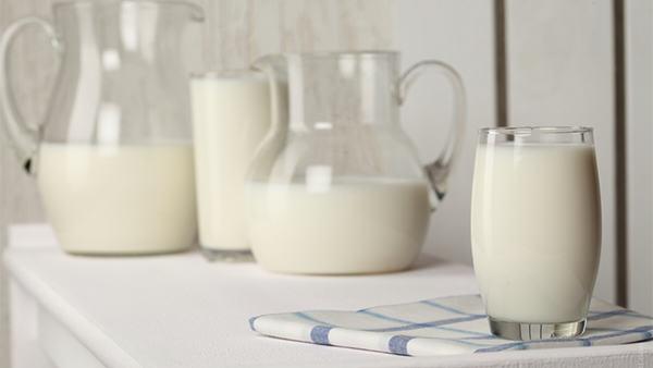 khasiat susu kambing
