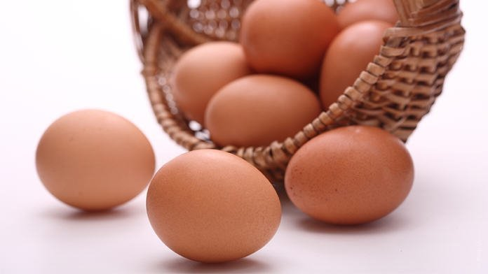 khasiat telur