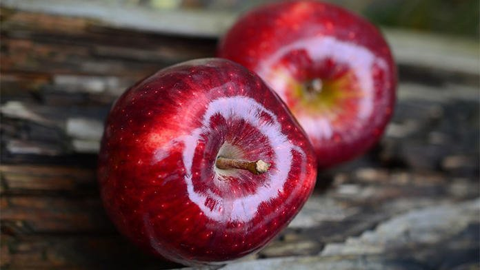 khasiat epal